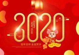 2020三和春节联欢晚会插图